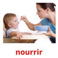 nourrir picture flashcards