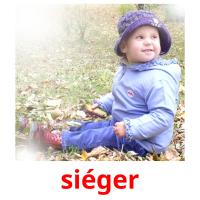 siéger picture flashcards