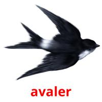 avaler picture flashcards
