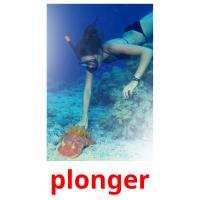 plonger picture flashcards