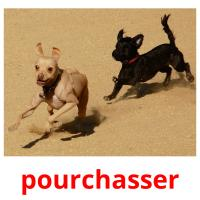 pourchasser picture flashcards