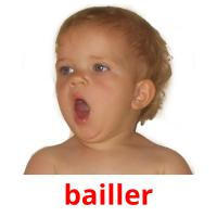 bailler picture flashcards