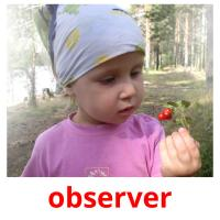 observer picture flashcards