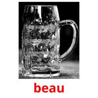 beau picture flashcards
