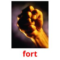 fort picture flashcards