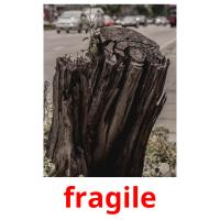 fragile picture flashcards