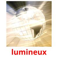 lumineux picture flashcards