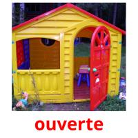 ouverte picture flashcards