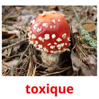 toxique picture flashcards