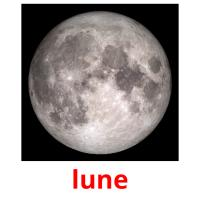 lune picture flashcards