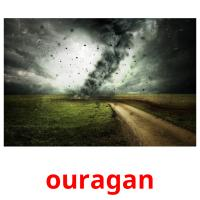 ouragan picture flashcards