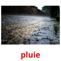 pluie picture flashcards