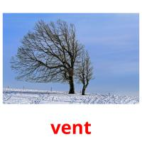 vent picture flashcards