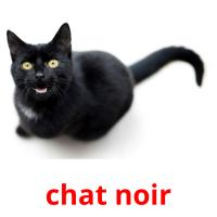 chat noir picture flashcards