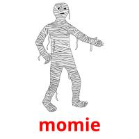 momie picture flashcards