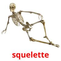 squelette picture flashcards
