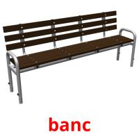 banc picture flashcards
