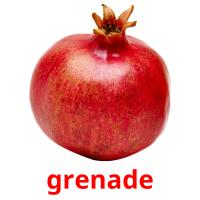 grenade picture flashcards