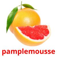 pamplemousse picture flashcards