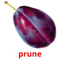 prune picture flashcards