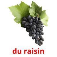 raisins picture flashcards