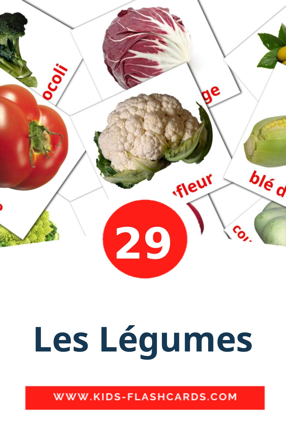 29 Légumes Picture Cards for Kindergarden in french