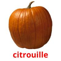 citrouille picture flashcards