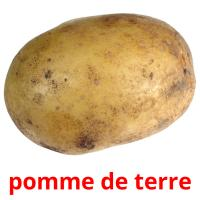 pomme de terre picture flashcards