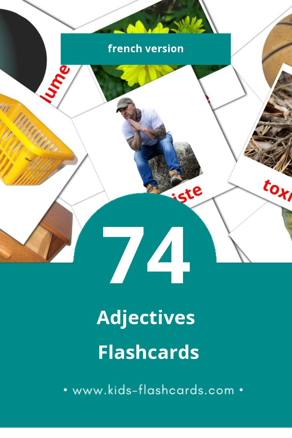 Visual Adjectifs Flashcards for Toddlers (74 cards in French)