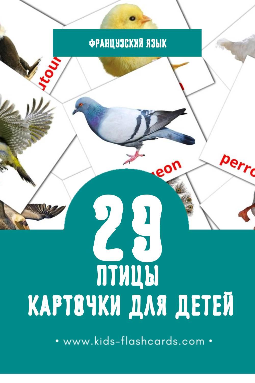 """""""Des oiseaux"""" - Визуальный Французском Словарь для Малышей (29 картинок)"""