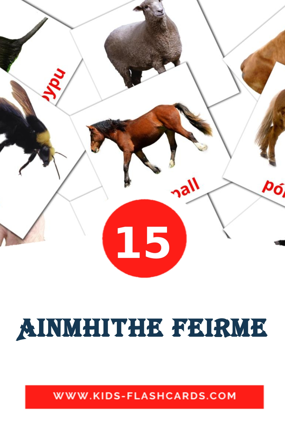 15 Ainmhithe Feirme Picture Cards for Kindergarden in irish