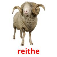 reithe picture flashcards