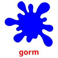 gorm picture flashcards