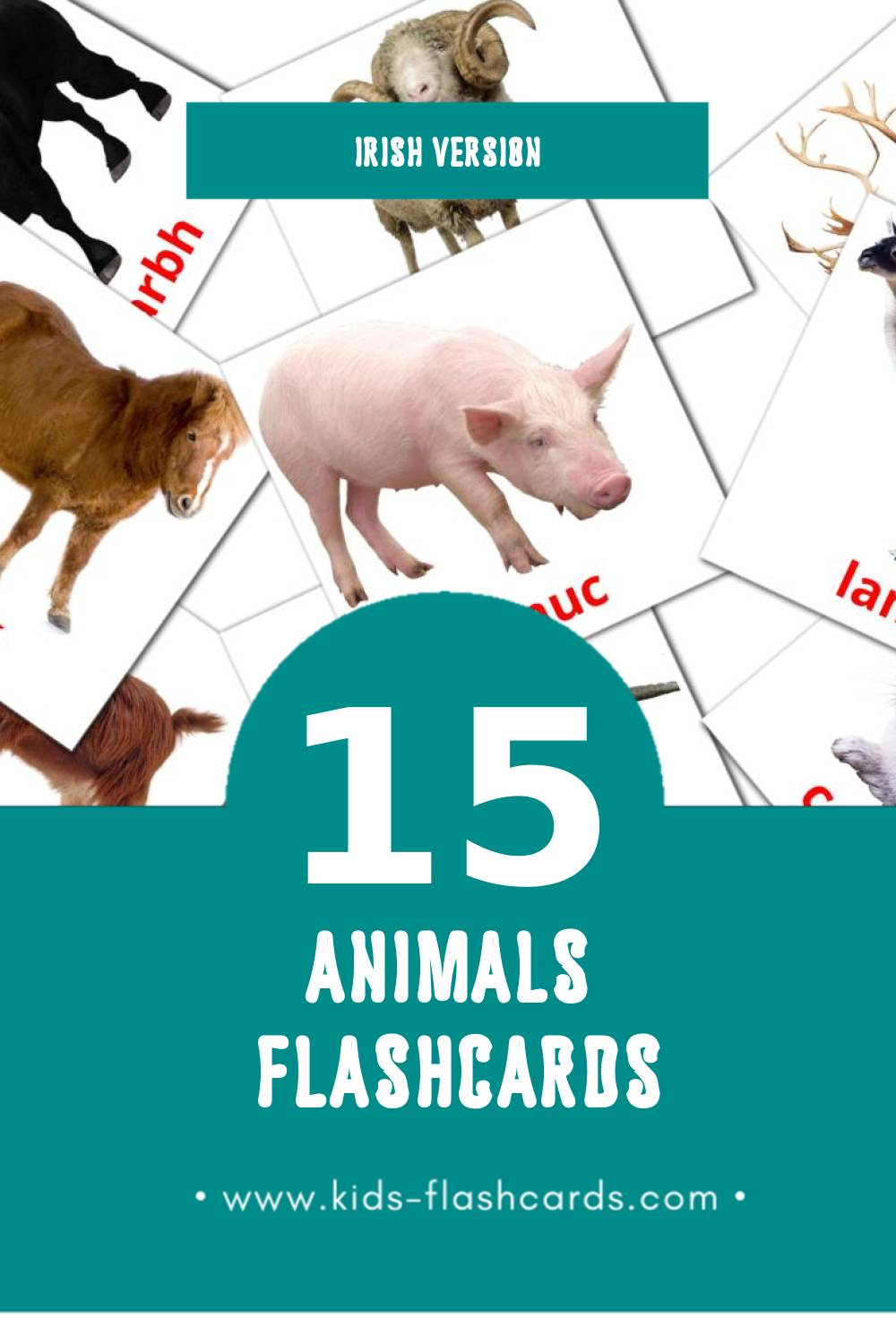 Visual animals Flashcards for Toddlers (15 cards in Irish)
