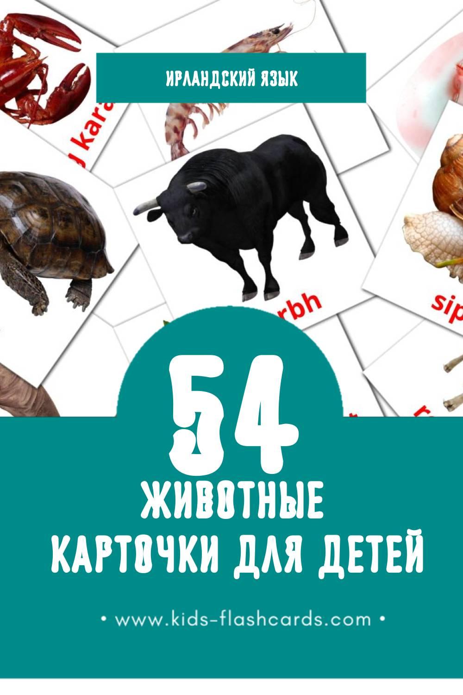"""""""animals"""" - Визуальный Ирландском Словарь для Малышей (15 картинок)"""