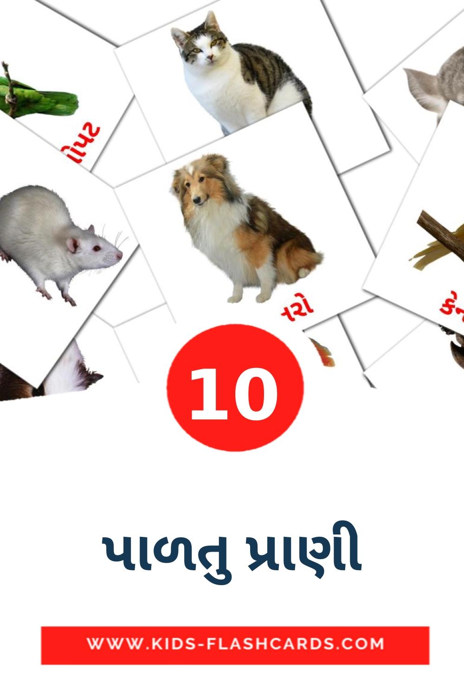 10 પાળતુ પ્રાણી Picture Cards for Kindergarden in gujarati