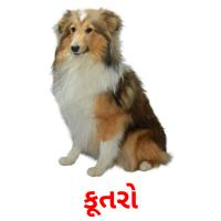 કૂતરો picture flashcards