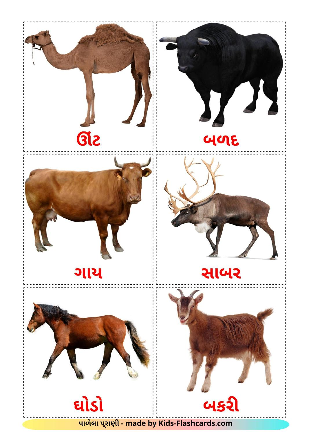Farm animals - 15 Free Printable gujarati Flashcards