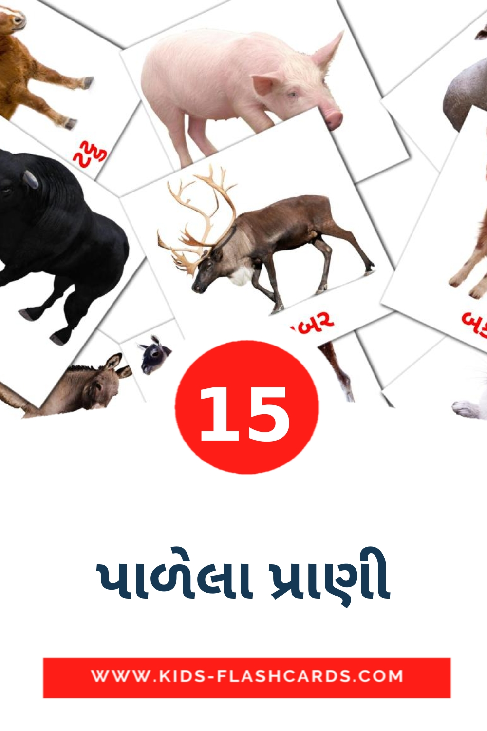 15 પાળેલા પ્રાણી Picture Cards for Kindergarden in gujarati