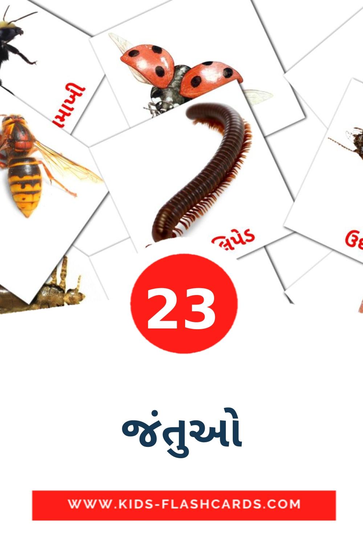 23 જંતુઓ Picture Cards for Kindergarden in gujarati