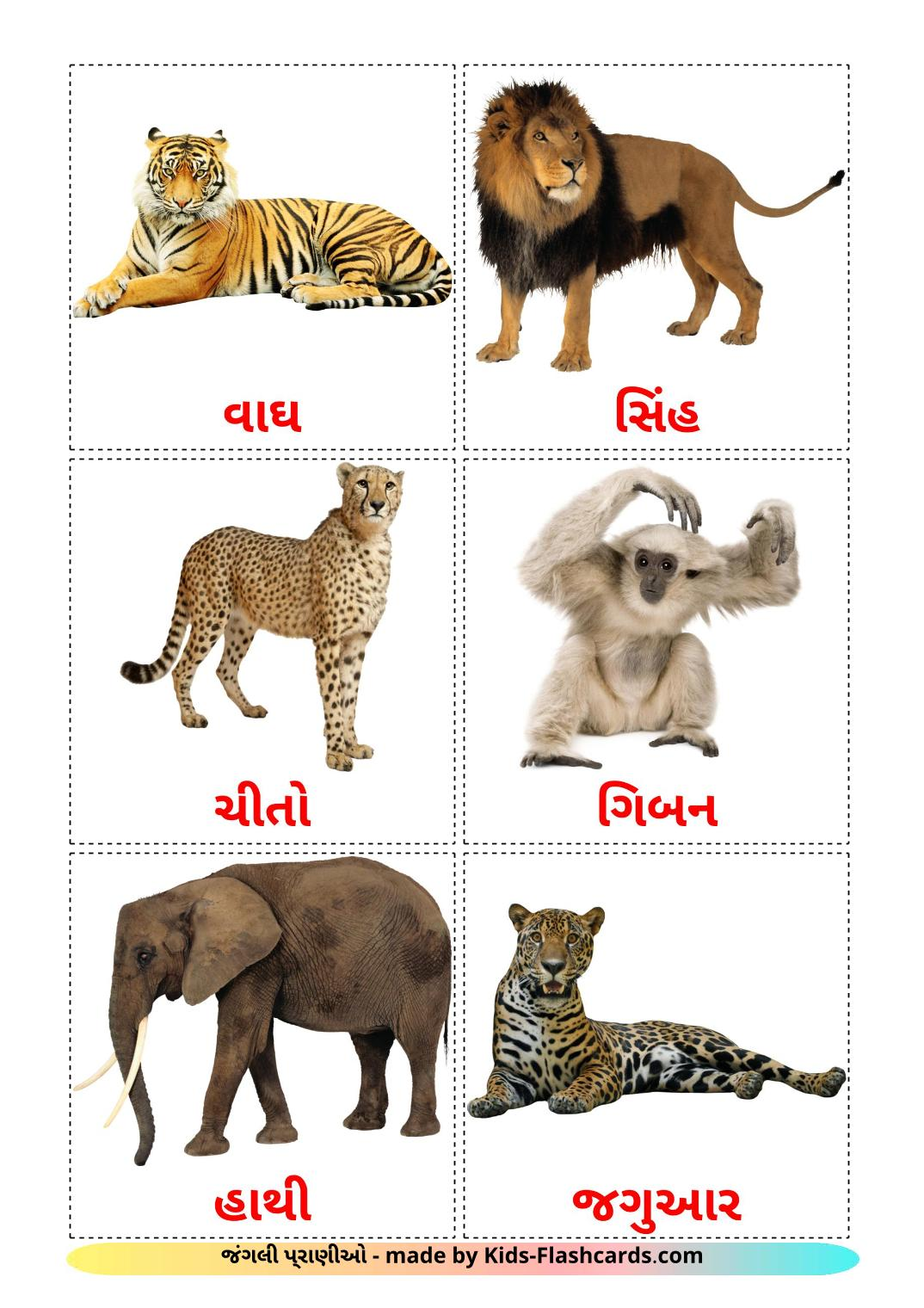 Jungle animals - 21 Free Printable gujarati Flashcards