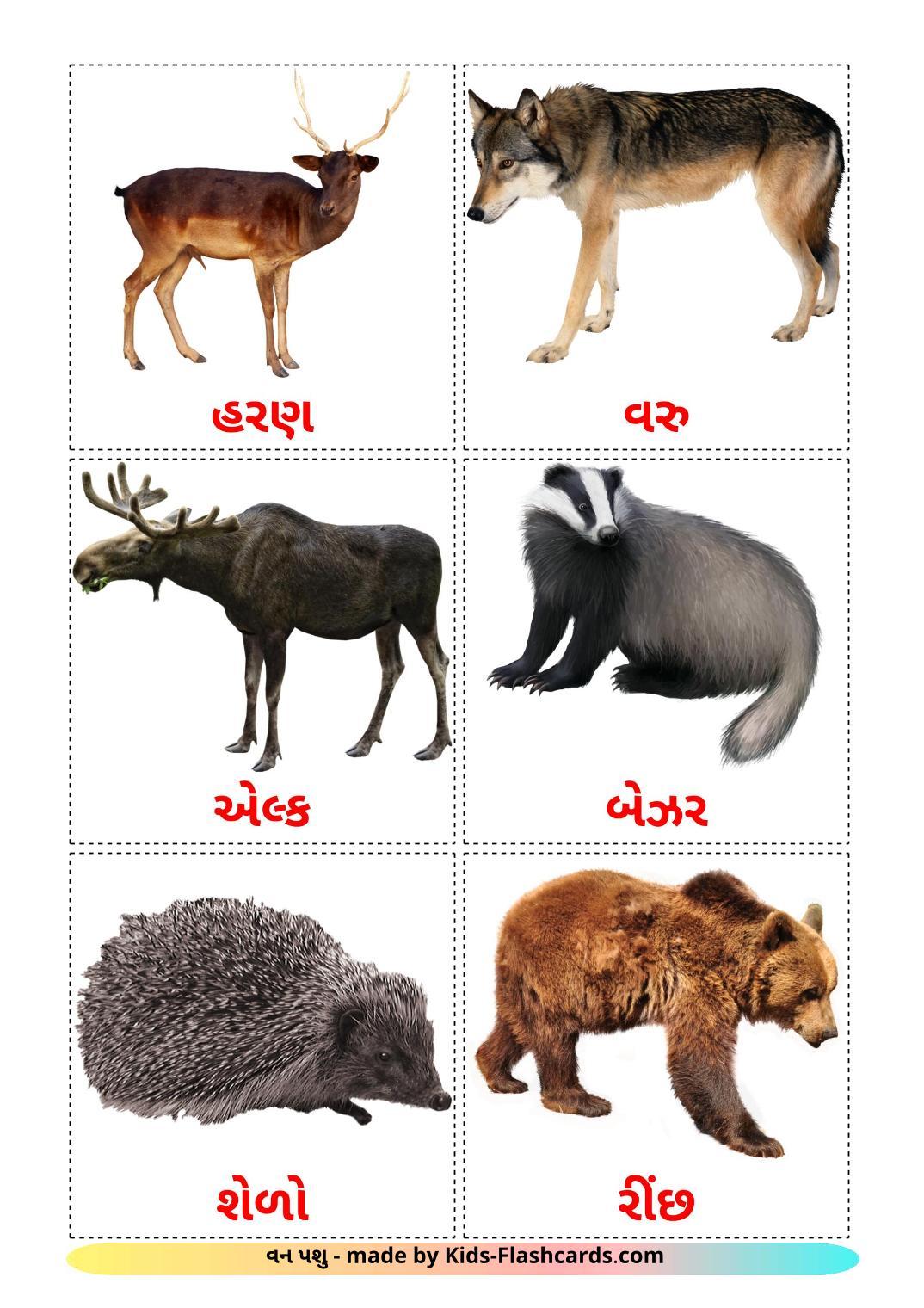 Forest animals - 22 Free Printable gujarati Flashcards