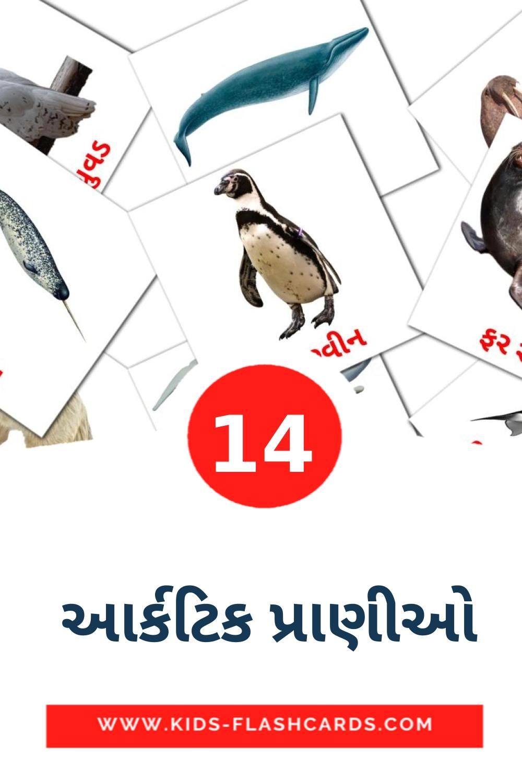 14  આર્કટિક પ્રાણીઓ Picture Cards for Kindergarden in gujarati