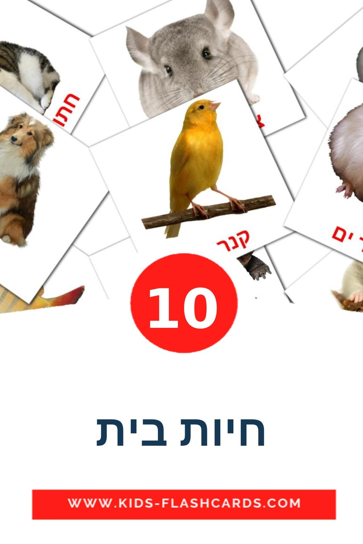 10 חיות בית Picture Cards for Kindergarden in hebrew