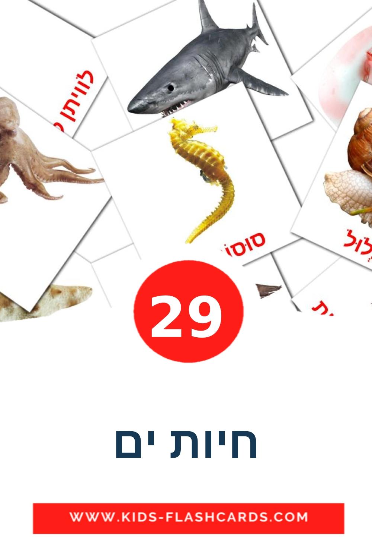 29 חיות ים Picture Cards for Kindergarden in hebrew