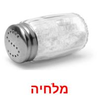 מלחיה picture flashcards