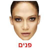 פנים picture flashcards