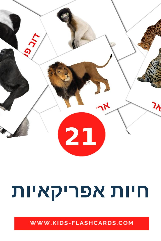 21 חיות אפריקאיות Picture Cards for Kindergarden in hebrew