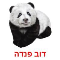 דוב פנדה picture flashcards