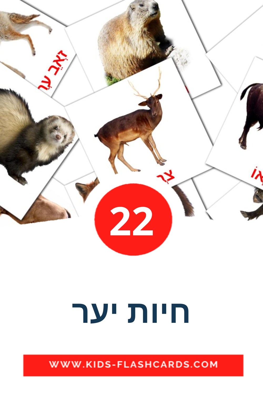 22 חיות יער Picture Cards for Kindergarden in hebrew